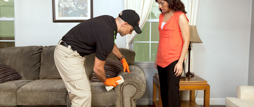 Austin, TX carpet upholstery cleaning
